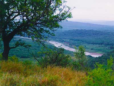 Imfolozi River South Africa Study Abroad Journal