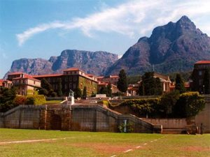 Elephants South Africa School for International Training