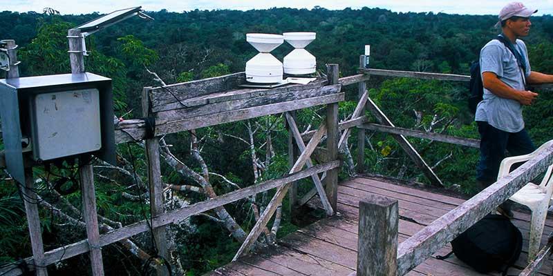 Tiputini Biodiversity Station | Yasuni National Park | Study Abroad Journal | Steven Andrew Martin